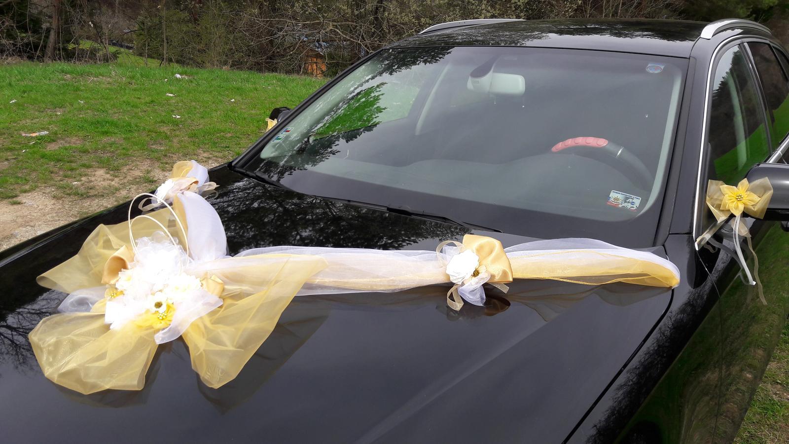 Výzdoba na kapotu auta - Obrázok č. 1
