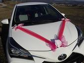Mašličky s pásmi na svadobné auto - cyklamén,
