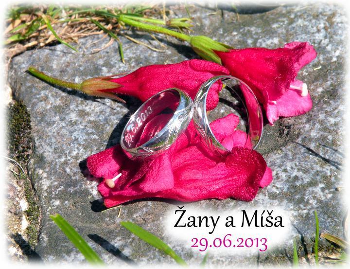 Žany{{_AND_}}Mišáček - Obrázek č. 2