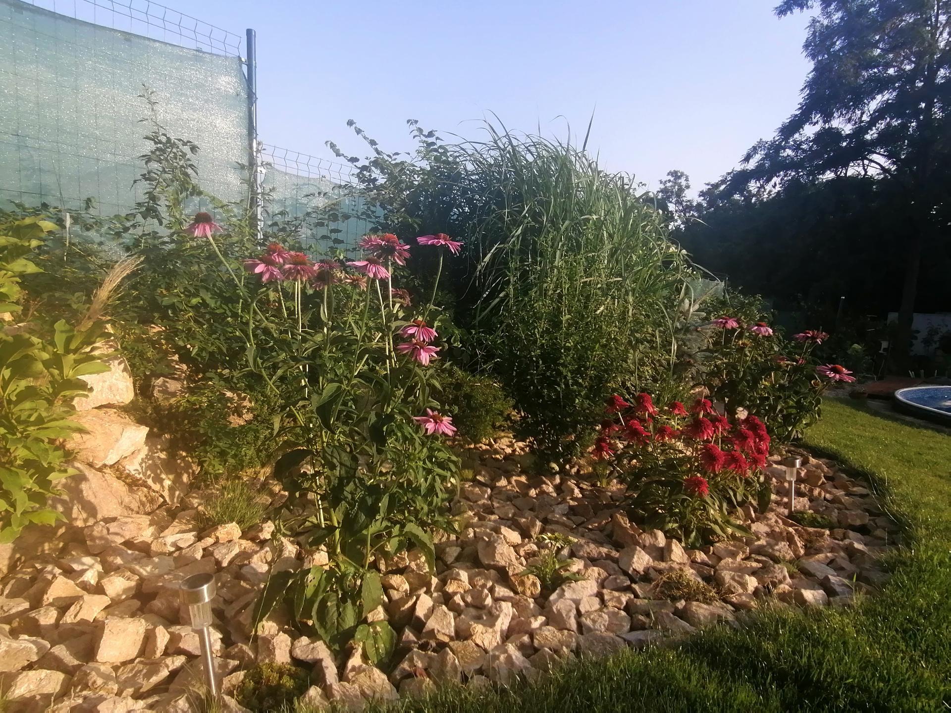 Záhrada a bývanie - 4.rok - Obrázok č. 30
