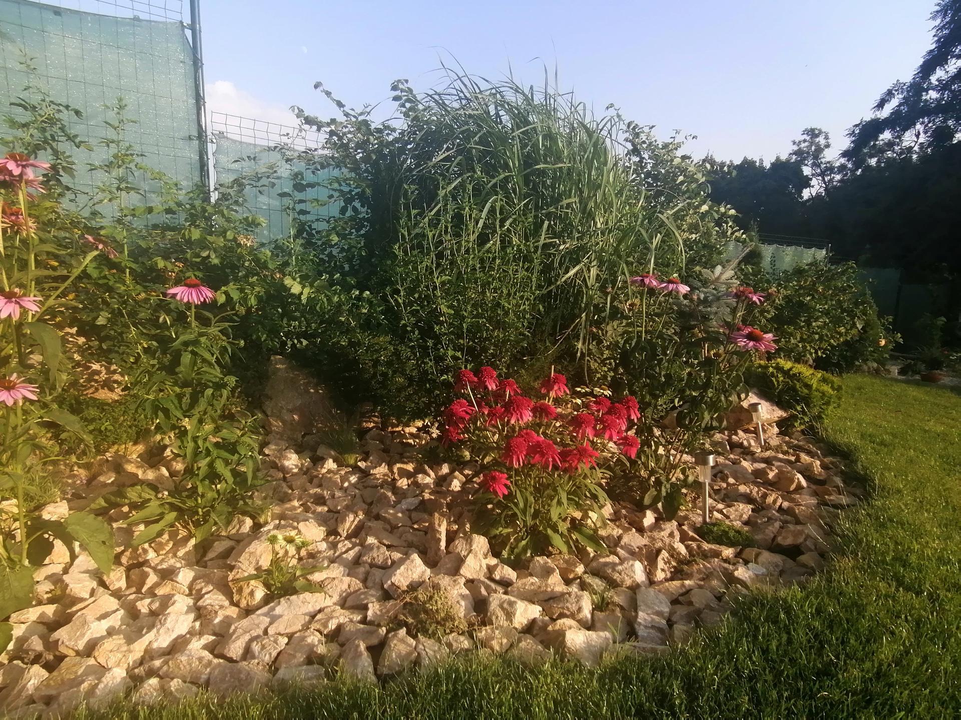 Záhrada a bývanie - 4.rok - Obrázok č. 31