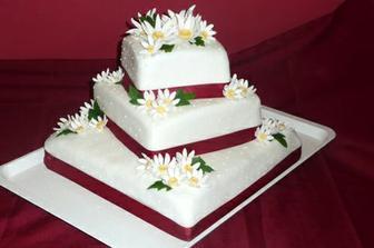 Tak tenhle dortík si budeme nechat dělat... pro nás nádherný :)