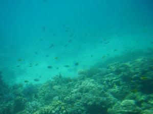 ten pokoj v mori je neopísateľný