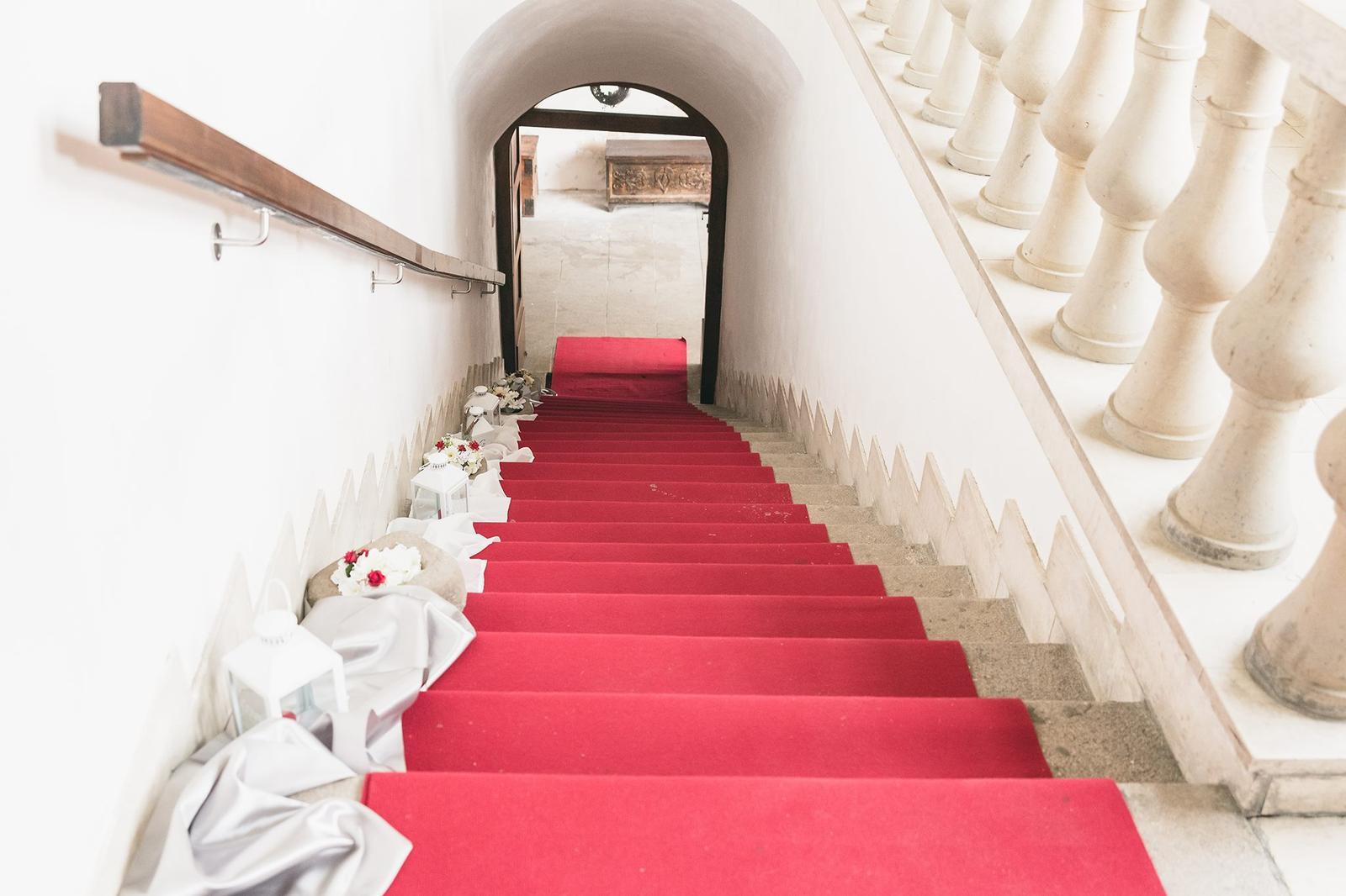 Červený koberec - Obrázok č. 1