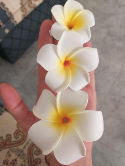 Kvet do vlasov - Plumeria/Frangipani/havajský kvet - Obrázok č. 1