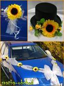 Svatební set na auta,