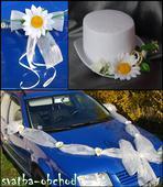 Svatební sada na výzdobu aut,