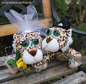 Tygříci na svatební auto ,