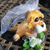 Svatební lvíčci 01 na auto,