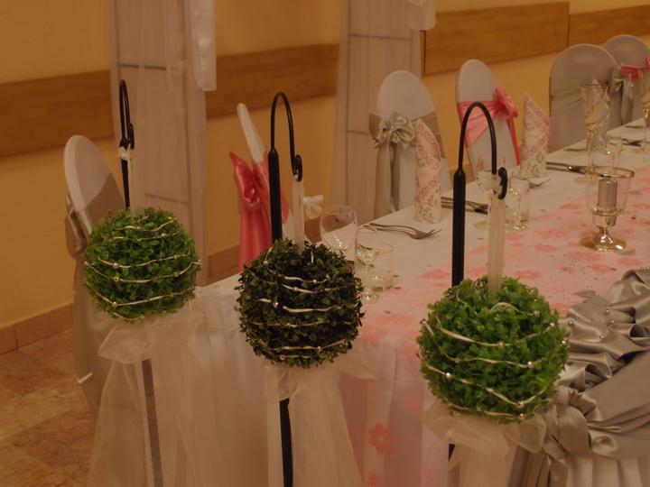 Svadba 11.8.2012, Kaskády Matejovce - Obrázok č. 22