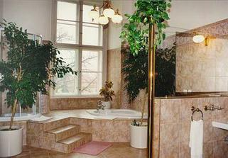 koupelna v apartmanu