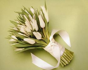 a zase tulipány