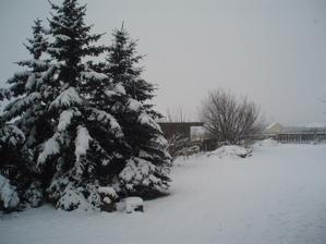 Vánoce, vánoce přicházejí.....:-)-naše zahrada