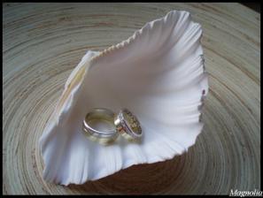 Konečně můj miláček přivezl domů naše prstýnky.