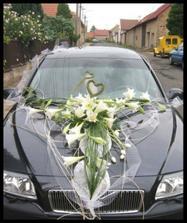 taky krása-hodila by se mi ke svatební kytičce