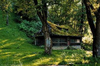 ...les, samoty