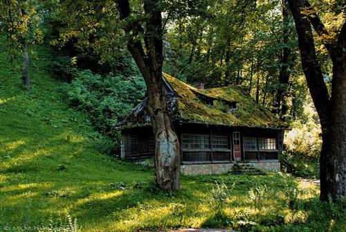Krajina pre bývanie - ...les, samoty
