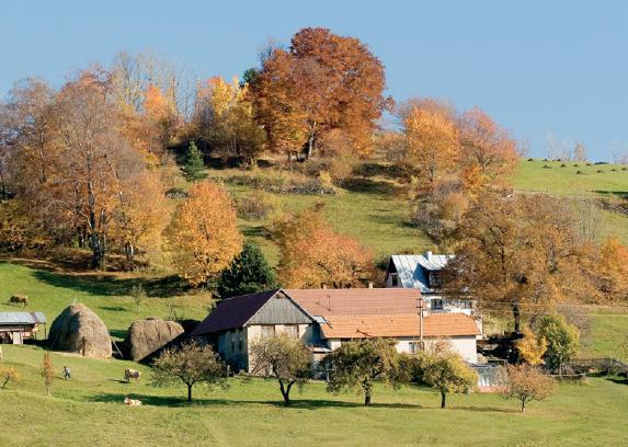 Krajina pre bývanie - ...kopanice