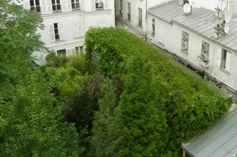 To zelené, to je dom...:)