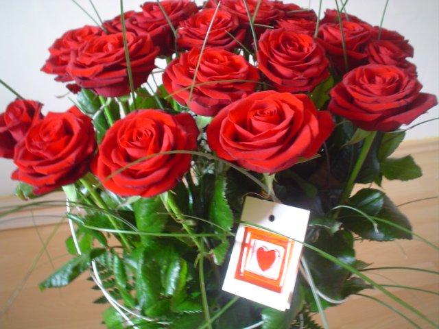 Naše prípravy - prvé ruže čo som od drahého dostala k narodeninám