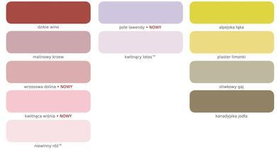 Vzorník namíchaných odstínů Dulux k dostání v Polsku - část D