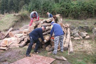 naša prvá drevo brigada