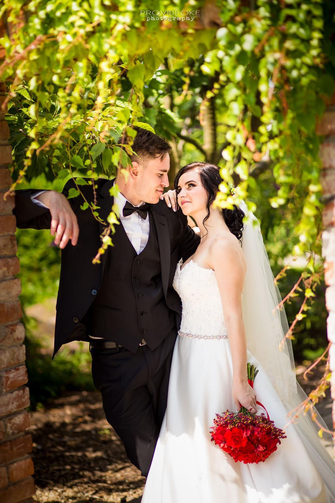 Svadobné príbehy ... - Obrázok č. 2