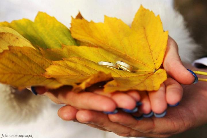 Evka{{_AND_}}Viktor - Naše krásne prstienky