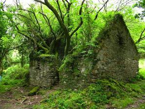 The Kerry Way walking path between Sneem and Kenmare in Ireland
