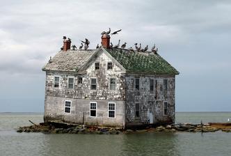 Holland Island in the Chesapeake Bay