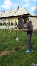 postav dom,zasad strom :)