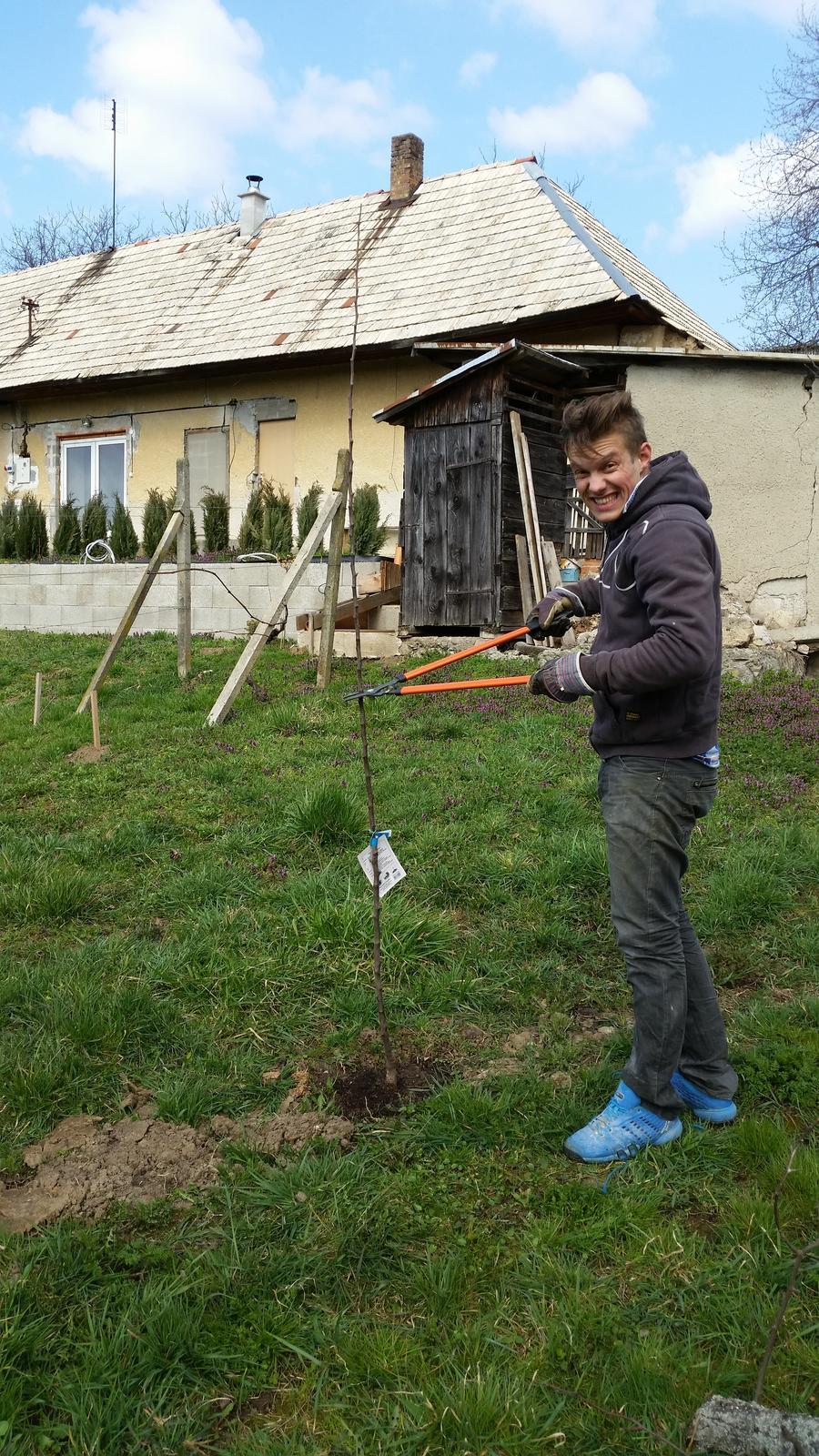 HACIENDA NAPOLI SEBECHLEBY - postav dom,zasad strom :)