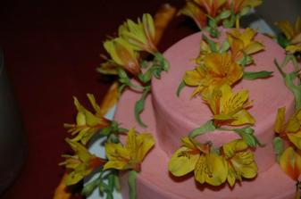 torta od segrenky