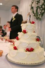 Torta - taká by sa mi páčila.. len bude buď čisto biela...alebo so svetlomodrými kvietkami...k výzdobe...