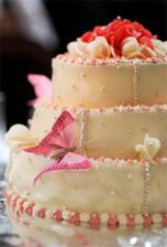 tortu robila kamarátka, a rovnako dobre chutila ako vyzerala