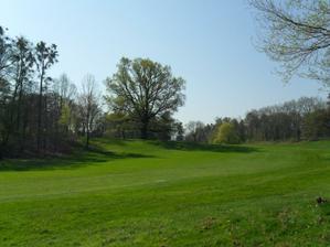 na takovém trávníku a v tak krásném parku se budou dělat krásné fotky.