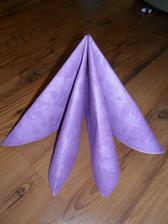 krásné fialové ubrousky..