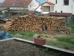 Dřevo na zimu :-)