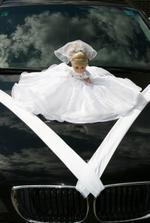 Panenka - nevěsta.