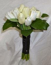 take maslove tulipany chcem mat!