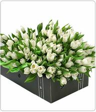 svadobná kytica bude z bielych tulipánov
