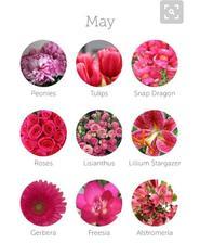 Předběžně domluvená schůzka v květinářství, barva kytice bude světlá se sytější růžovou.