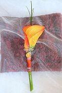Kala je zajímavá, ale spíš tulipán ve stejné barvě
