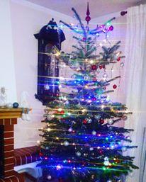 Krásné Vánoce! - Obrázek č. 1