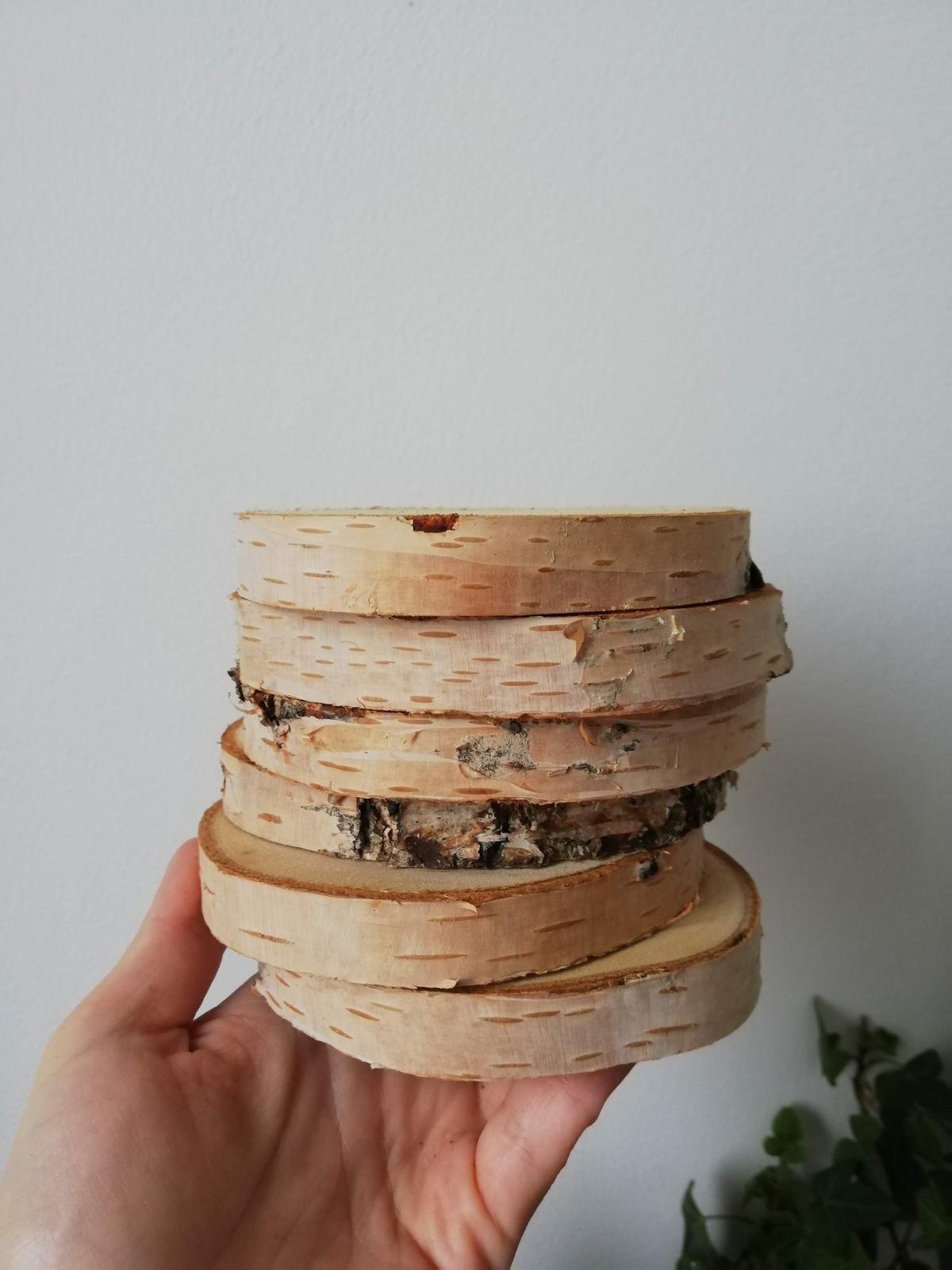 Kulatiny z břízy průměr cca 10 cm - Obrázek č. 1