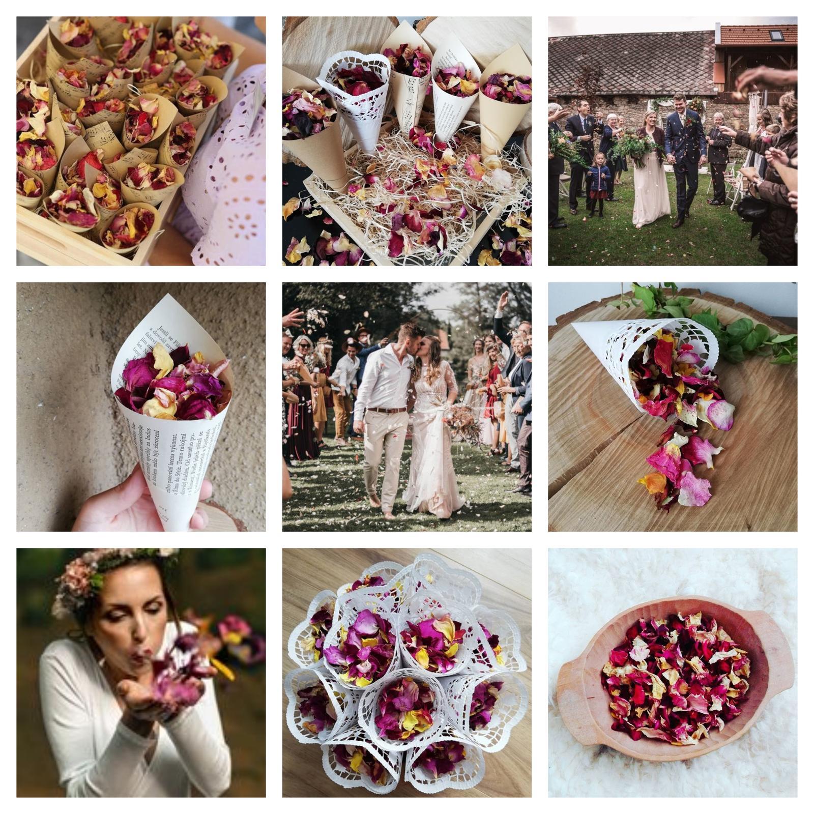 Sušené lístečky růží + kornoutky - Obrázek č. 1