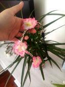 Růžová květovaná čelenka,