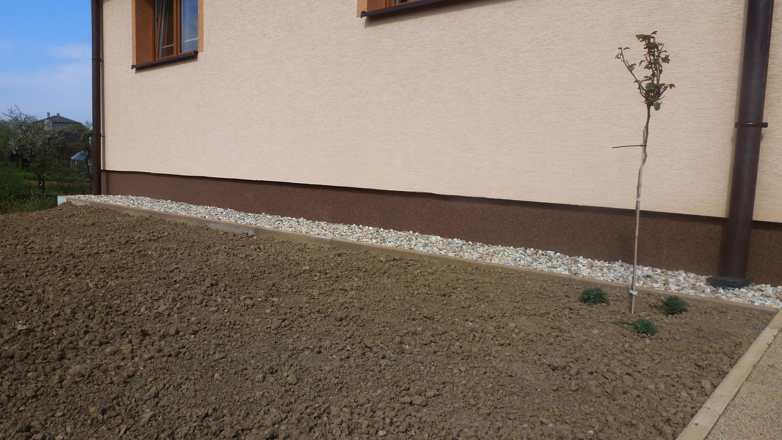 Náš dvor a záhrada 2014 - vpravo ruza na kmienku