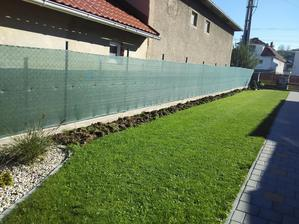 Buduci rok budem vysadzat aj pri plote, teraz priprava :)