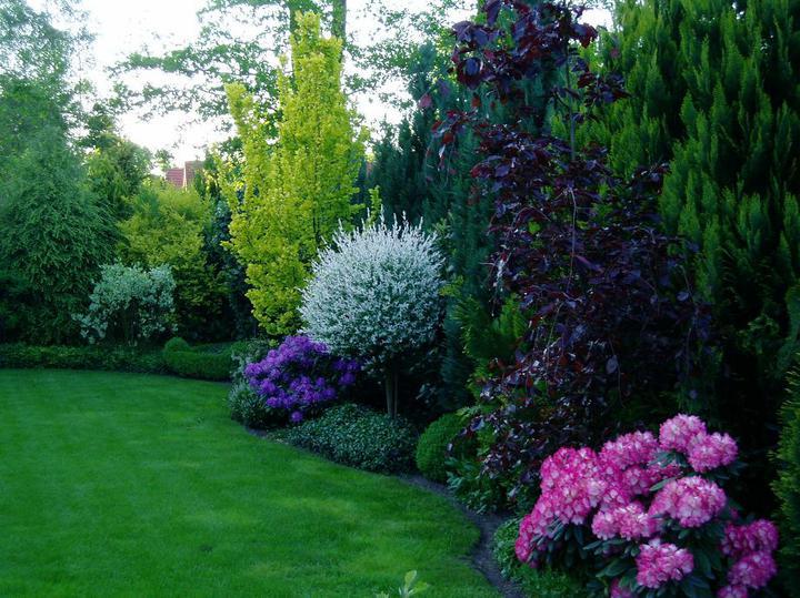 Inšpirácie pre moju (tvoju) záhradu ;) - Obrázok č. 1